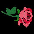 rose-e1594247556240.png